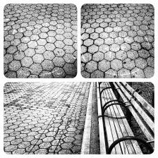 Central Park Memories