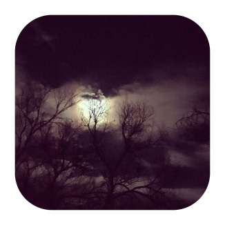 Full Christmas Moon